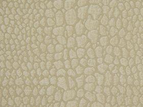 Gabbana Ivory